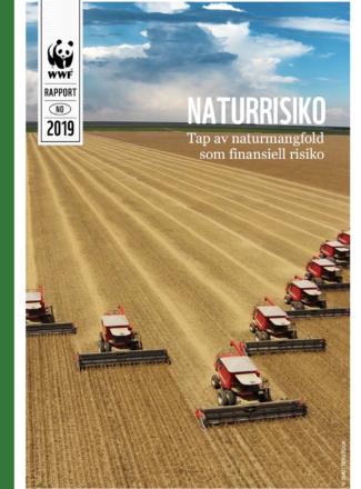 Skjermbilde av forsiden på rapporten om naturrisiko