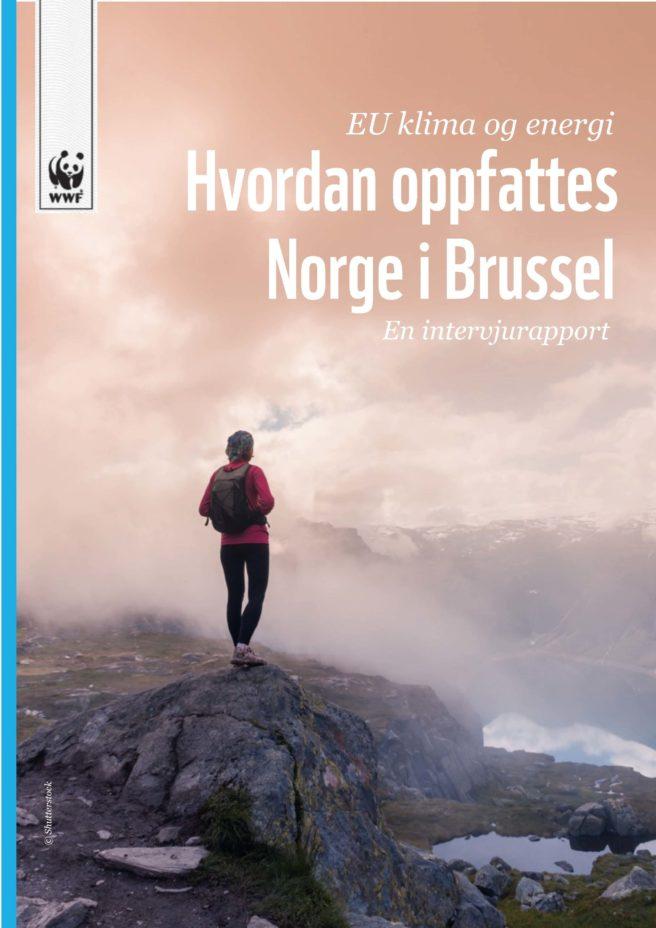 """Forsiden av WWFs nye rapport """"EU klima og energi: Hvordan oppfattes Norge i Brussel"""", med et bilde av ryggen til en tyrgåer på en fjelltopp som ser mot en fjellrygg og et vann."""