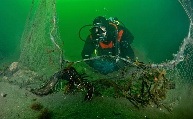 hummer i fiskeutstyr