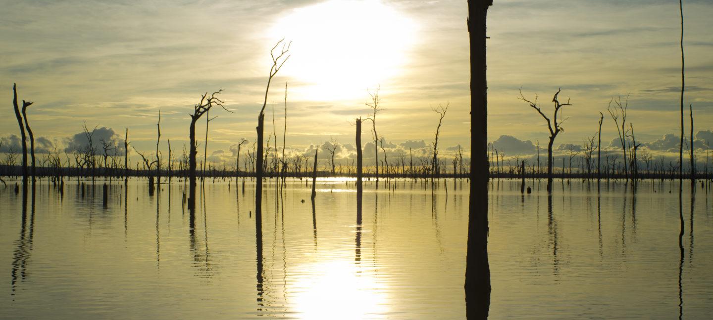Amazonas beskyttede område. Solnedgang over vannet med mange stående trestammer.