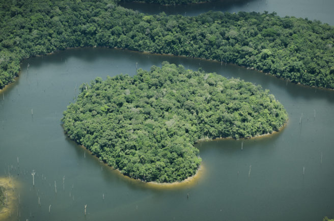 Bilde av Amazonas-elven