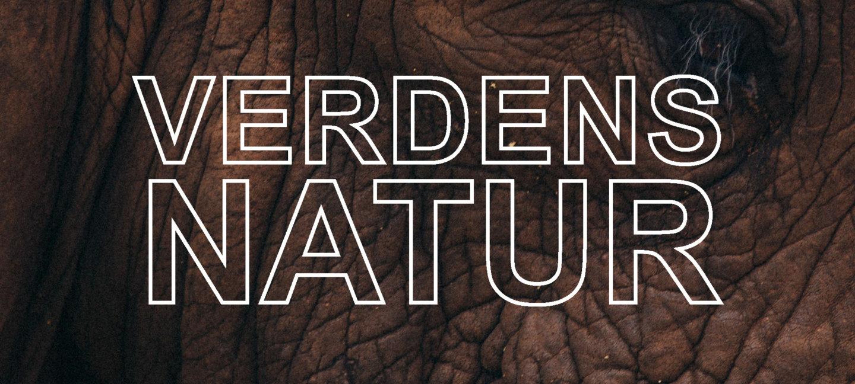 Teksten Verdens Natur står på et nærbilde av et elefantansikt og øye