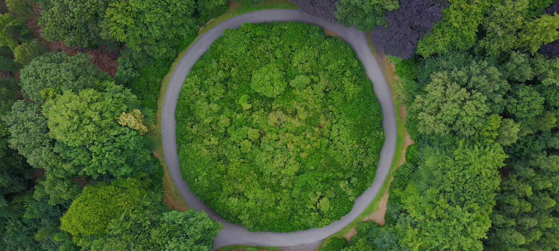 En skog sees ovenfra med en elv som går i sirkel.