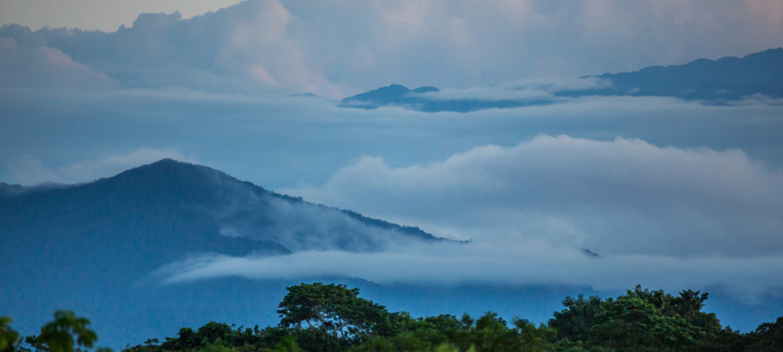 Tykk tåke dekker såvidt fjelltoppene og danner et lokk over regnskogen.