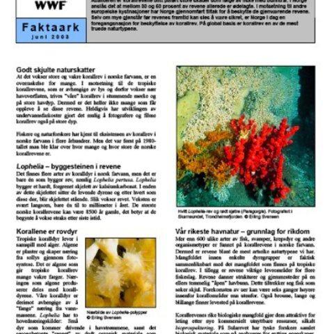 Forsiden av rapporten