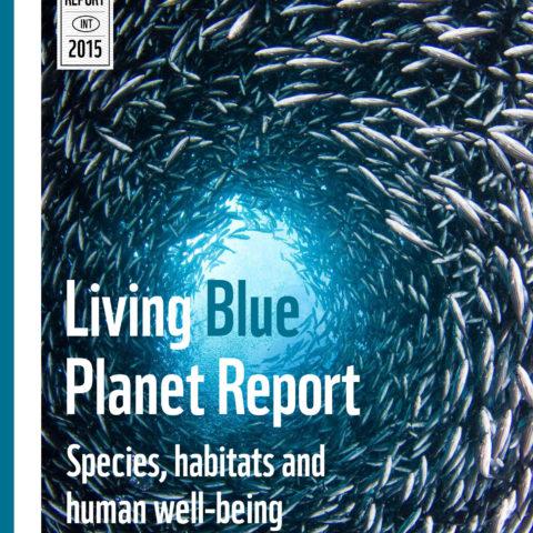 Forsiden til rapporten