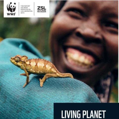 Forsiden til WWFs Living Planet Report 2020