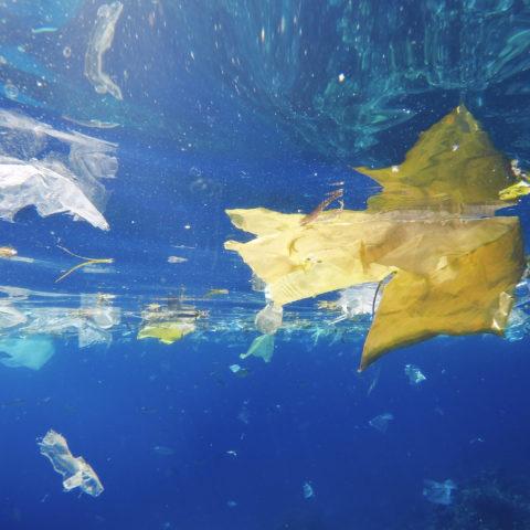 Plast flytende i havet