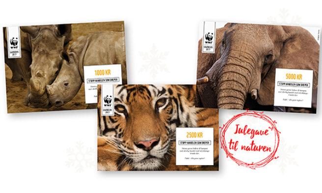 Tre gavebevis fra WWF med bilde av isbjørn, skilpadde og panda.