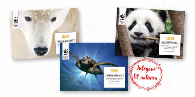 Tre gavebevis fra WWF med bilde av isbjørn, skilpadde og panda