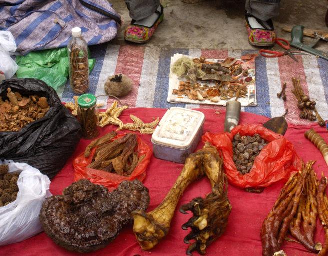 Ulike deler fra ville dyr til salgs på et marked i Kina.