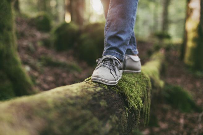 Fot med sko balanserer på grønn trestokk i skogen