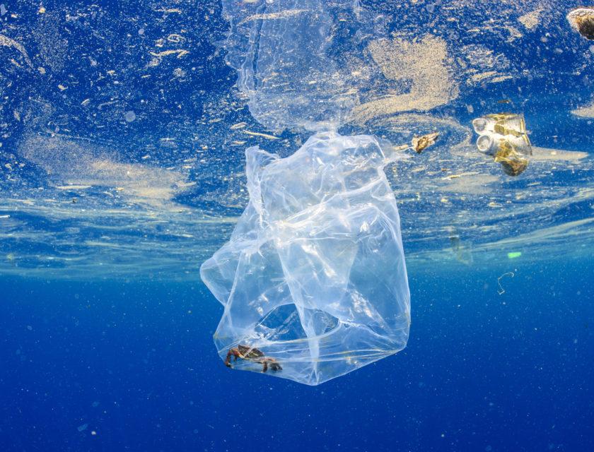 Plast som flyter i havet med en krabbe fanget inni
